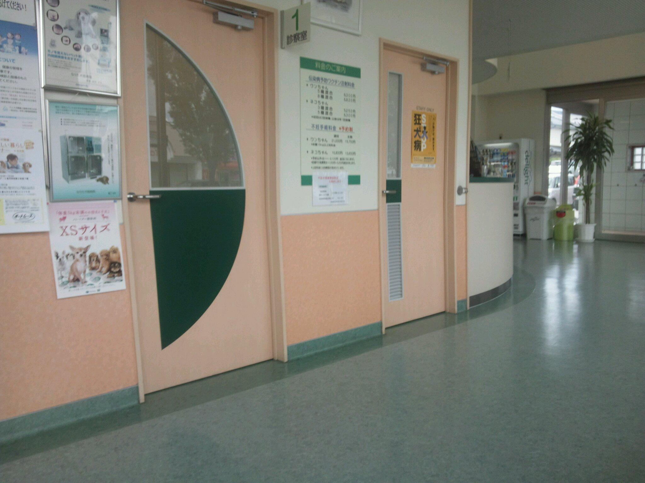 アメリ病院へ